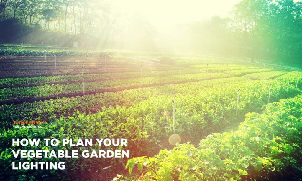 how-to-plan-your-vegetable-garden-lighting