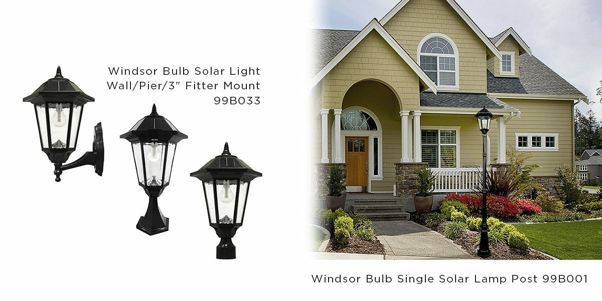 The Windsor Bulb Series